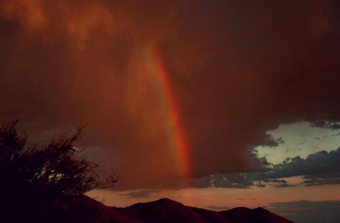 Q A Red Rainbows Sky Lights