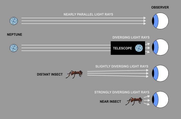 Q a how telescopes and microscopes differ u sky lights
