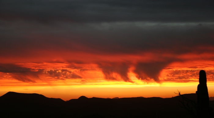 Sunset Virga