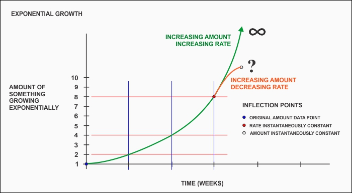 Q&A: Exponential Growth